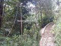 Tanah Investasi Murah dan Luas Dijual Tanah di Windujaya Kedungbanteng Purwokerto