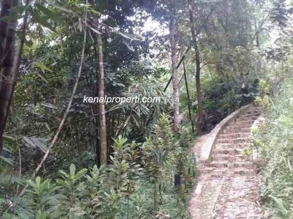 Tanah Investasi Murah dan Luas, Dijual Tanah di Windujaya Kedungbanteng Purwokerto