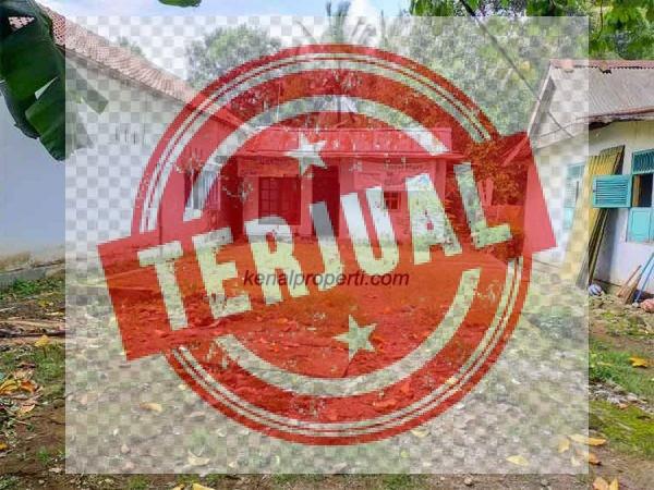 Dijual Tanah Non Perumahan Tambaksogra Sumbang Purwokerto
